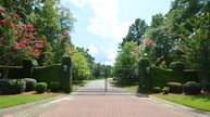 Lot 60 Sorrell Red Court Warrenville SC, 29851
