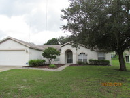 10520 Juliano Dr Riverview FL, 33569
