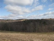 Lot #1 Hickory Creek Gorge New Castle PA, 16102