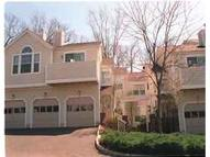 32 Pheasant Brook Ct Bedminster NJ, 07921