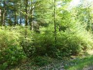 French Clearing Road Forestburgh NY, 12777