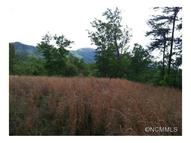 Lot 10 Sloping Meadow Drive Mill Spring NC, 28756