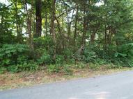 Lot 102 A Shell Mountain Road Sevierville TN, 37862