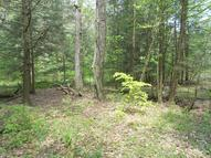 Off E. Cypher & Polecat Hollow Road Lot# 5 Hopewell PA, 16650