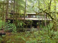 60 North Woods Cougar WA, 98616