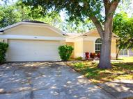 11209 Thicket Ct Tampa FL, 33624