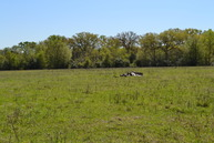 469 Cr 452 Normangee TX, 77871