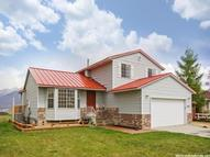 15631 S Wood Hollow Dr Bluffdale UT, 84065