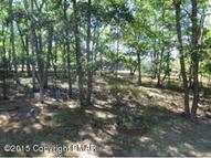 Lot 20 Sec Light Court Ct Henryville PA, 18332