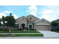 11202 Coventry Grove Circle Lithia FL, 33547