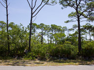 1600 Ivy Way Saint George Island FL, 32328