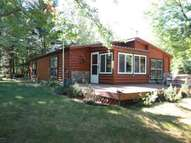 7411 Dyer Lake Trail Falmouth MI, 49632