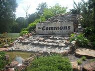 0 Commons View Huffman TX, 77336