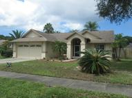 1429 Ridge Shore  Dr Tarpon Springs FL, 34689