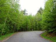 Lot 21 Pine Orchard Road Hague NY, 12836