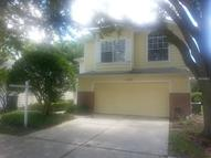 5153 Sterling Manor  Dr Tampa FL, 33647