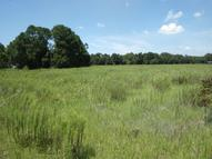 Lot 1680 Platinum Dr Spring Hill FL, 34610