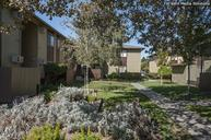 Driftwood Apartments Tracy CA, 95376
