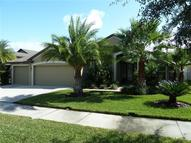 19350 Yellow Clover  Dr Tampa FL, 33647