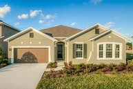1321 Cadence Court Brandon FL, 33511