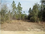 00 Cedar Springs Farm Road Holt FL, 32564