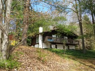 19 Rose Mountain Rd Big Indian NY, 12410