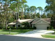 80 Greenhaven Trail Oldsmar FL, 34677