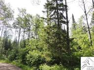 Lot 5 Pendant Lake Tr Grand Marais MN, 55604