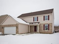 8111 Settler'S Pond Way Joliet IL, 60431