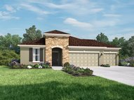 13104 Bee  Blossom  Pl Riverview FL, 33579