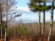 Lot 3 Taft Hill Trace Newfane VT, 05345