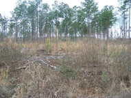 Lot A-2 Muddy Cross Road Hobbsville NC, 27946