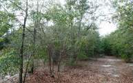 Tbd Sw 54th Trail Jasper FL, 32052