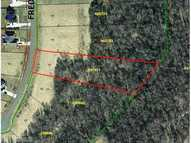 Lot 17 Fred East Pleasant Garden NC, 27313