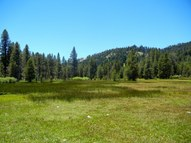 39.05 Ac Beasore Rd Bass Lake CA, 93604