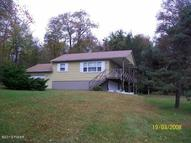 33 Alpine Rd Beach Lake PA, 18405