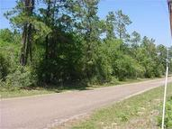 Lot 71 Carter Navasota TX, 77868