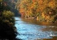 Lot 25 Crossing On The Middle Fork Buckhannon WV, 26201