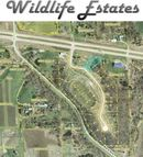 1540 Wildlife Drive Blue Grass IA, 52726
