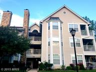 5632 Willoughby Newton Dr #31 Centreville VA, 20120