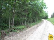 Lot 4 Herring Court Lincoln MO, 65338