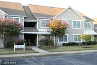 611 Teal Court F Chester MD, 21619