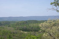 Lot 48 Meadows Station Drive Nebo NC, 28761
