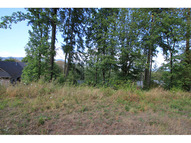 Forest Ridge Dr Lot #96 Springfield OR, 97478