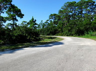 1648 Forsythia Court Saint George Island FL, 32328