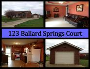 123 Ballard Springs Ct Ct Bardstown KY, 40004