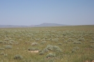 Lot 99 Cassidy River Ranch Medicine Bow WY, 82329