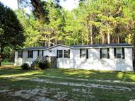 478 Paige Point Bluff Seabrook SC, 29940
