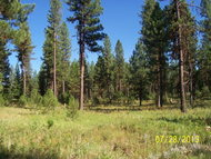 Lot 33 Timber Ridge Dr New Meadows ID, 83654