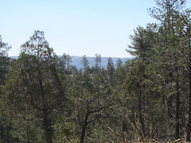 Tr 5b Horizon View Trail Ruidoso NM, 88345
